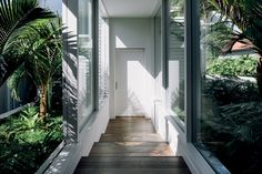 Surprises lurk beyond the original façade of this Remuera bungalow. Like a well kept secret, a renovated bungalow hides a black steel and glass addition from the street. Hot House, Window Frames, Bungalow, Facade, Stairs, Wellness, 1930s, Black And White, The Originals