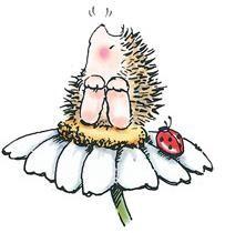 *Penny Black Rubber Stamp LADYBUG 'n Hedgehog Hedgy 1433f