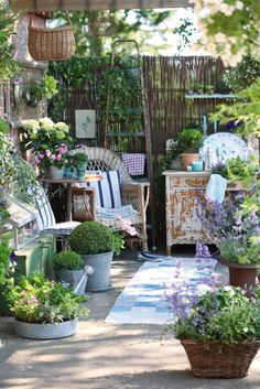Love the wattle screen, old step ladder and the distressed furniture with the different planters used.