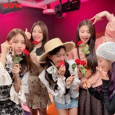 South Korean Girls, Korean Girl Groups, Pre Debut, Like A Lion, Girls Together, Cube Entertainment, Soyeon, Minnie, Seulgi