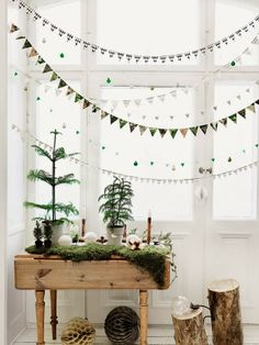 Nature themed Christmas decorations- a beautiful and unique change from the usual overdone red & green decor of old!