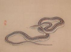 Artist:Bairei Title:Snake Series: Medium:Woodblock Print Date:c.1890