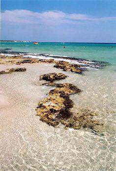 Panoramio - Photo of La spiaggia di Alimini