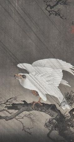 One of a set of eight animal and bird woodblock prints by Hiroshige, done in the early 20th century