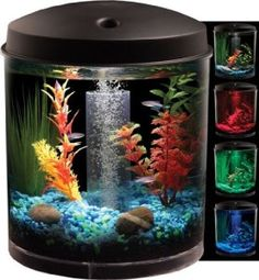 Aside from the belief that an #aquarium is #beautiful, many also feel that owning an aquarium can be #relaxing, #rewarding and a great conversation piece all at the same time! #crazygeektoys #kollercraft http://crazygeektoys.com/kollercraft-aquarius/ #CrazyGeekToys