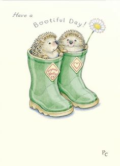 Cut out hedgehogs and attach to make them look like they're coming out of boots Hedgehog Art, Hedgehog Drawing, Penny Black, Cute Illustration, Hedgehog Illustration, Cute Drawings, Cute Art, Illustrators, Cute Pictures