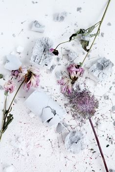 Broste Copenhagen is one of Scandinavia's leading interior brands, based in Copenhagen and originates back to 1955 Candle Art, Broste Copenhagen, To Infinity And Beyond, Still Life Photography, Floral Style, Color Inspiration, Wedding Inspiration, Beautiful Flowers, Beautiful Mess
