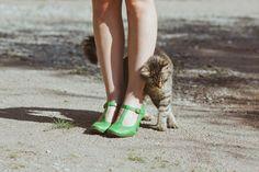 cute shoes & cat