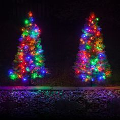 Multicolor LED Outdoor Walkway trees. Amazing way to add color to the entrance…