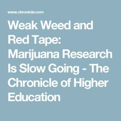 Weak Weed and Red Tape: Marijuana Research Is Slow Going - The Chronicle of Higher Education