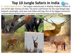 Kanha National Park >>> http://www.boredpanda.com/top-10-jungle-safaris-in-india/  #MadhyaPradesh #NationalParks, #WildlifeSanctuary, #WildlifeSafaris, #JungleSafaris #India #365Hops