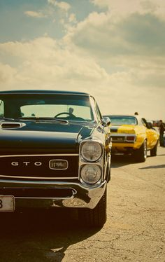 1966 Pontiac GTO and 1970 Chevrolet Chevelle coupe SS / Super Sport
