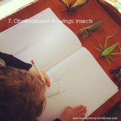 Reggio Emilia Art Activities   snapshot of our week, our everyday story