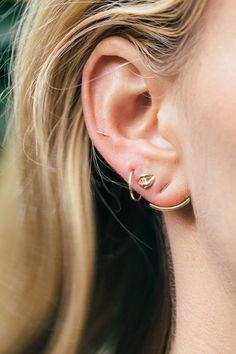 an ear full of Catbird