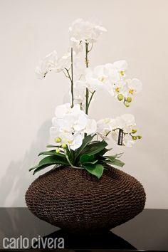 Composizione pianta phalaenopsis in vaso di corda. http://carlocivera.org  #phalaenopsis #vasocorda #arredamento