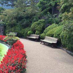 強羅。植物公園内。噴水前。