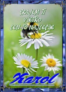 Karol Prajem Ti všetko len to najlepšie November, Plants, Blog, Author, November Born, Blogging, Plant, Planets