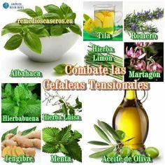 10 remedios naturales contra la cefalea tensional | Sentirse bien es facilisimo.com