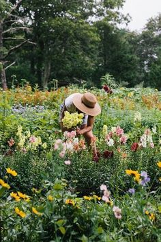 Picking flowers in an English Style Cottage Garden! The post Picking flowers in an English Style Cottage Garden! appeared first on Gardening.