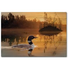 "WGI GALLERY Stone Island Loon Painting Print Plaque Size: 30"" H x 40"" W x 1"" D"