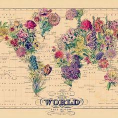 Mundo + flores= paraíso terrenal