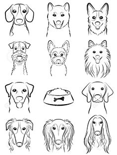 Dog / Line Drawing Royalty Free Cliparts, Vectors, And Stock Illustration. Pic…