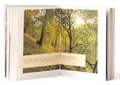 Placement for the text. Also consider not having a large photo be full bleed but just centred on a double spread. Layout Design, Print Design, Web Design, Graphic Design, Design Ideas, Book Photography, Photography Business, Artist Life, Large Photos
