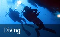 diving.jpg (210×130)