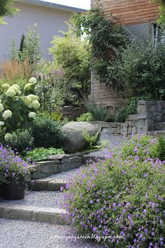 Pretty garden with pops of purple