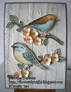 handmade greeting card ... pair of stamped and die cut birds on branches (I would switch directions so both birds face in rather than off the card and away from each other ...) ... luv the soft coloring ... great use of birches embossing folder texture for background ... from Flowers by night ... Stampin' Up!