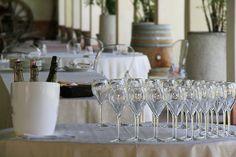 Wine tasting at Palazzo Lana, Berlucchi winery in Franciacorta, Italy
