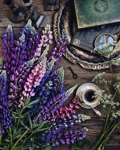 Witch Aesthetic, Purple Aesthetic, Aesthetic Art, Of Wallpaper, Iphone Wallpaper, Moonlight Photography, Book Flowers, Still Life Photos, Aesthetic Backgrounds