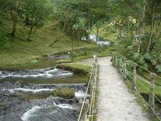 Corre el agua clara entre el verde de #Ibague #Tolima. #FotoDelDia EnMiColombia.com