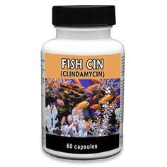 Fish Cin - Clindamycin 150mg (60 Capsules). No prescription required.