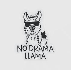 Llama llama mad at....