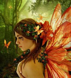.butterfly or fairy?!