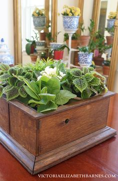 Repurpose an antique box into a pretty table decoration…   Now you have a REASON to buy that vintage yardsale junk!