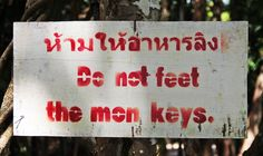 Do not feet the mon keys.