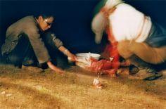 Sheep shaman sacrifice
