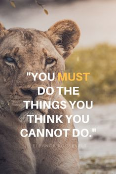 Do the things you think you cannot do. Repin this to your own inspiration board #liveanoutstandinglife #inspiration #lifequotes #resilience #success #selfcare #dreams #career #improvement #quote #mindset #dailyinspiration #qotd #quotesIlove #accomplishment #amazingquotes #encouragingquotes #mentalhealth #selfdevelopment