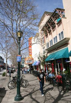Downtown Santa Cruz, CA. Dog friendly streets and many shops let well behaved dogs in!