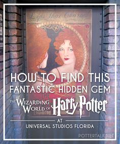 Potter Talk: Universal Studios Florida Conjures Secret Fantastic Beasts Location for Die-Hard Fans Universal Studios Florida, Universal Orlando, Disney Universal Studios, Universal Resort, Orlando Florida, Harry Potter World Universal, Orlando Travel, Orlando Disney, Downtown Disney