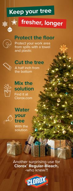 Whether this year is your first visit to a local tree farm to cut down your family's Christmas tree, or you've been tromping off into the woods to find the perfect tree for years —when you get it home, you'll want an easy way to keep the tree fresher longer during the holidays. Learn how at Clorox.com.