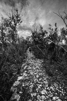 Adderley's Plantation ruins   Long Island Bahamas derekford.com Long Island Bahamas, Ford, Explore, Photography, Outdoor, Outdoors, Photograph, Fotografie, Photoshoot