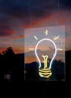 Tim Davis Illuminations Lightbulb Shop Window