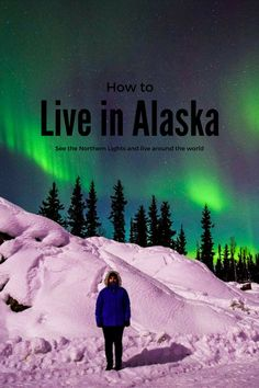 Thinking about exploring the elusive Alaska? Read this guide to living in Alaska and seeing the Northern Lights. Moving To Alaska, Alaska Travel, Canada Travel, Usa Travel Guide, Travel Usa, Travel Tips, Ecuador, Living In Alaska, Alaska