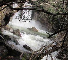 Banias waterfall two meters away.  Photo: Lior Shelef