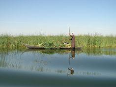 Parque Nacional do Iraque.