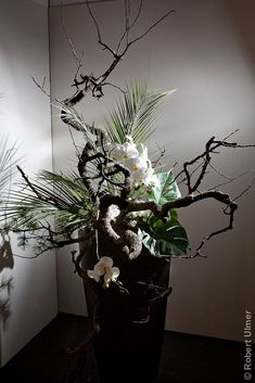 Ikebana #6 | by Robert Ulmer