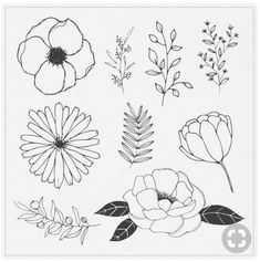 drawing flower flowers drawings drawn line hand floral botanical doodle simple draw sketches vector crown hands wreath pflanzen tattoo discover
